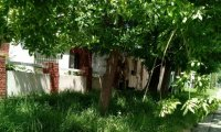Reclaman limpieza de una vivienda que permanece abandonada